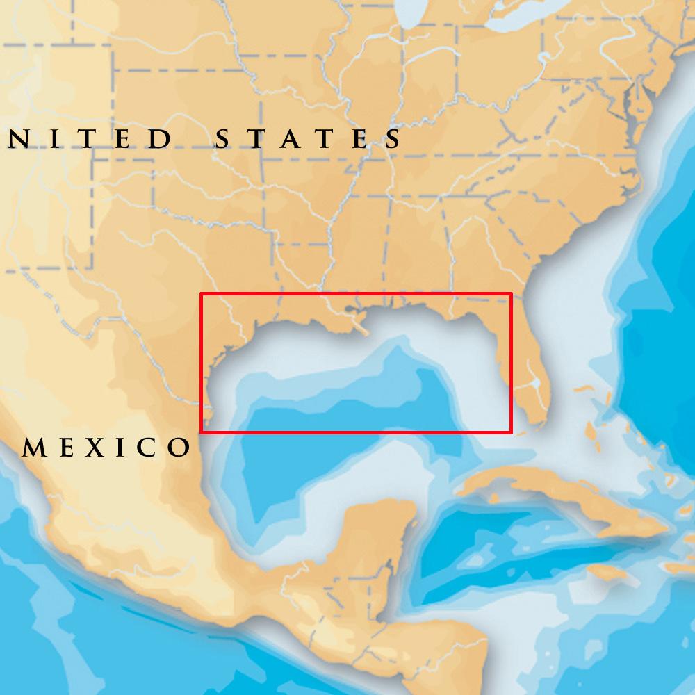 Navionics Platinum+ - Gulf Of Mexico - microSD™/SD™