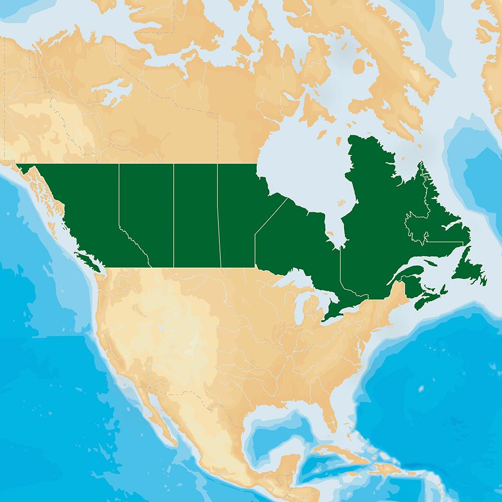 Navionics HotMaps Platinum Lake Maps - Canada - microSD™/SD™